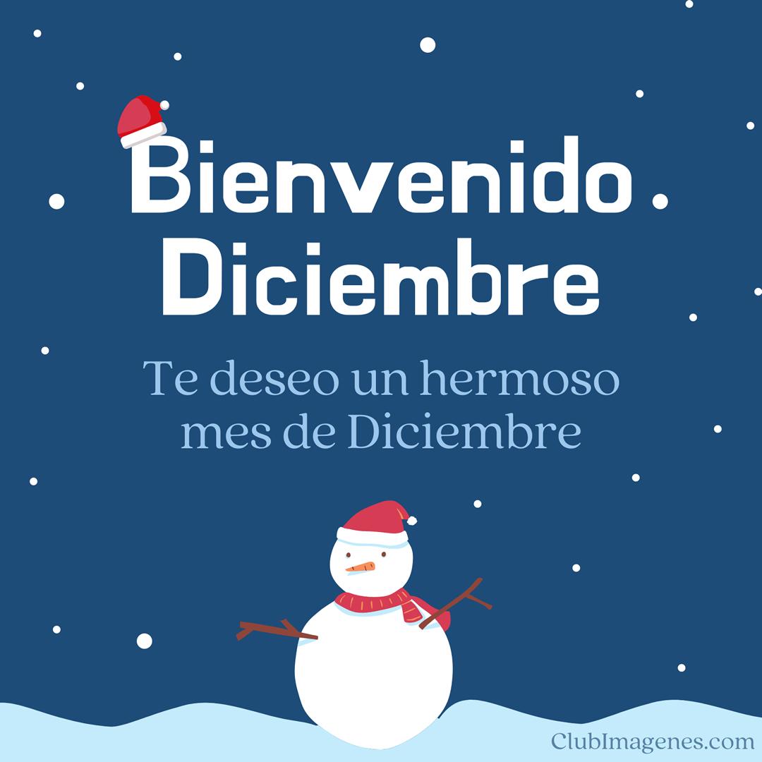 Bienvenido Diciembre. Te deseo...