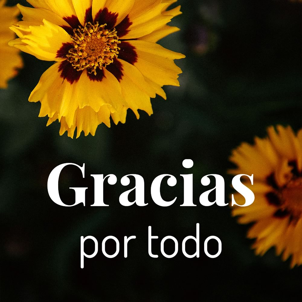 Gracias por todo
