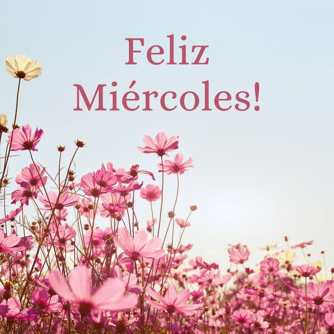 Feliz Miércoles!