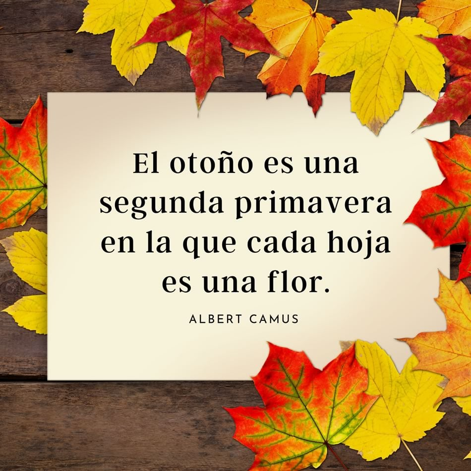 El otoño es una segunda...